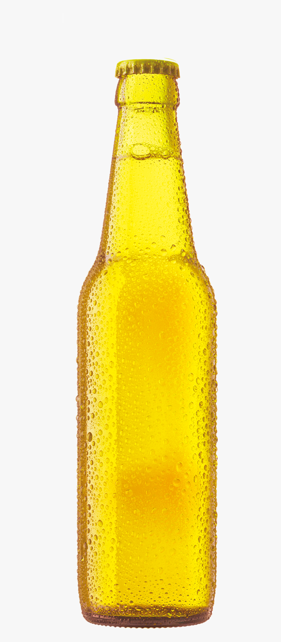 Beer Bottle Cup Free Clipart Hq Clipart.