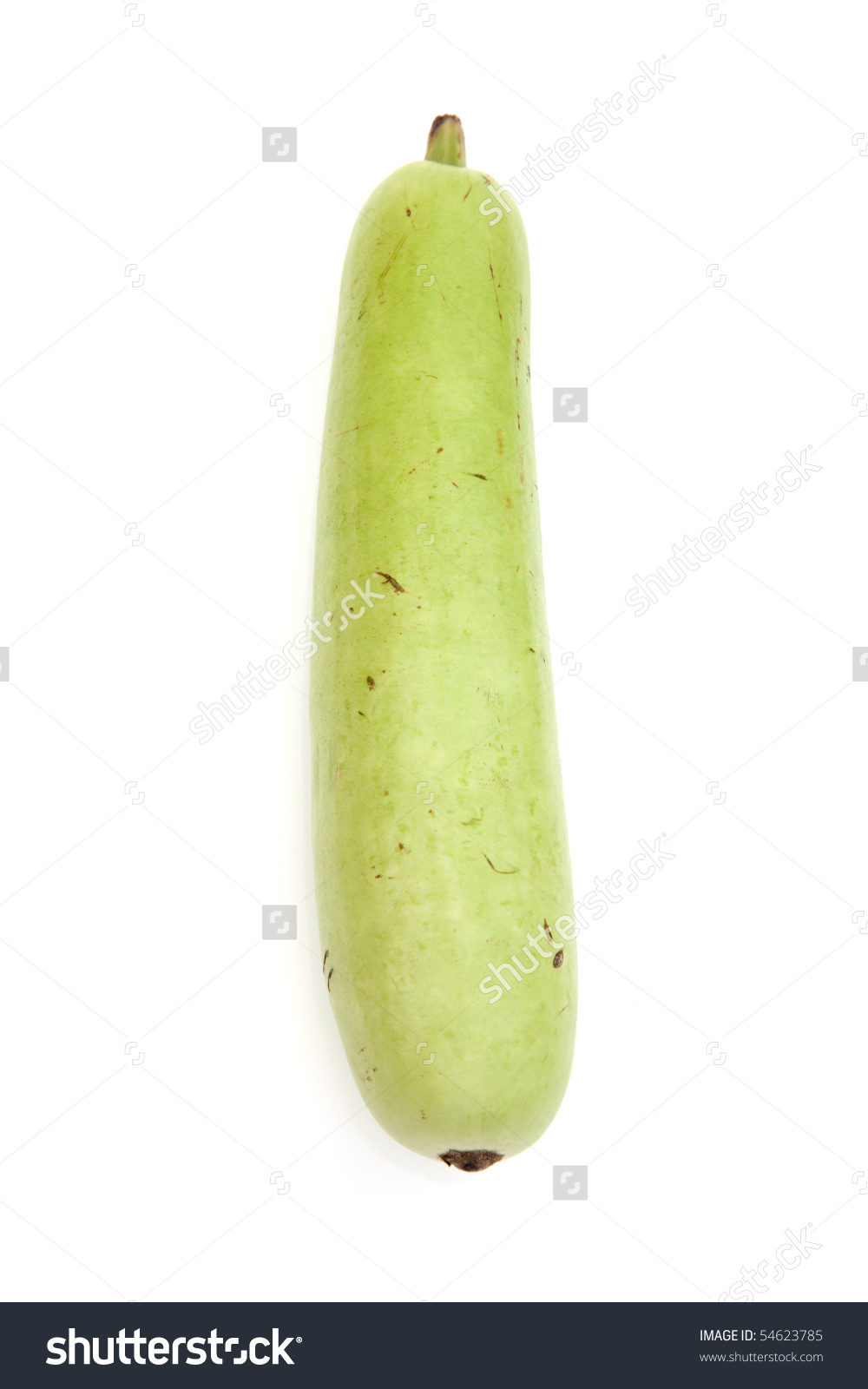 Dudhi Bottle Gourd Isolated On White Stock Photo 54623785.