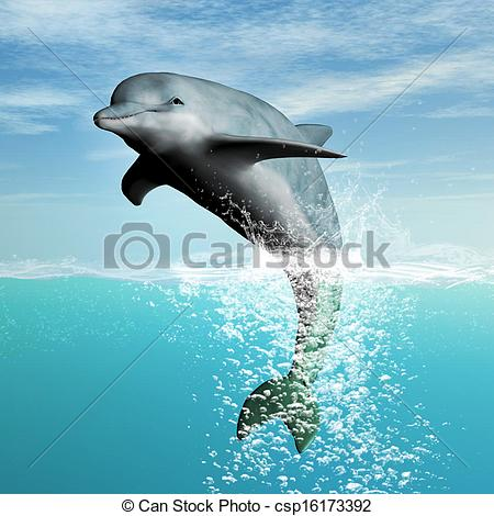 Bottlenose Clip Art and Stock Illustrations. 212 Bottlenose EPS.