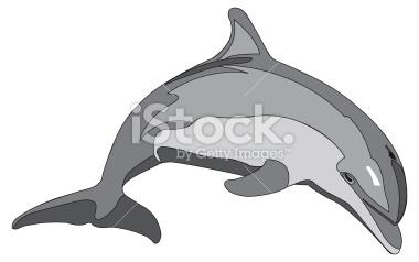 bottlenose dolphin gmat