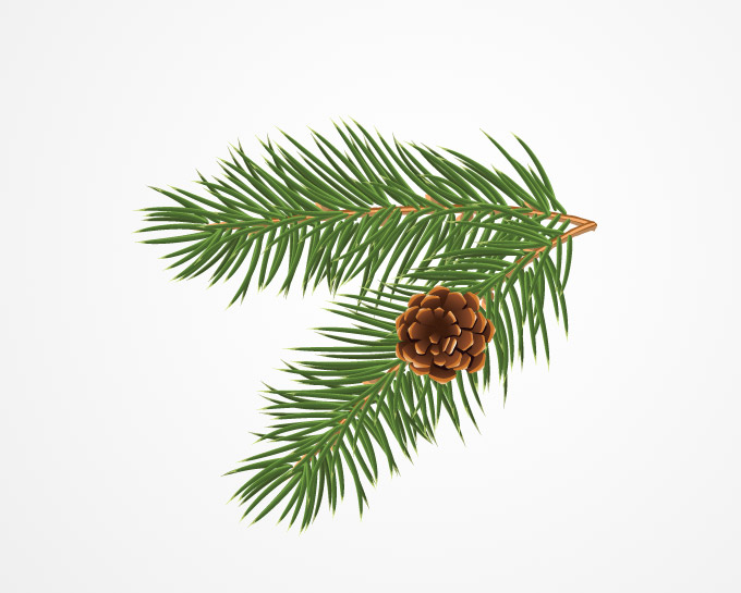 Pine Bough Decoration Clipart.