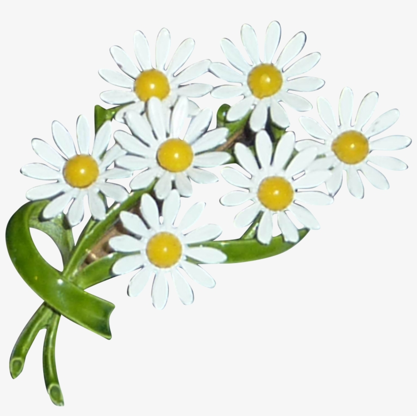 Daisy Bouquet Free Png Image.
