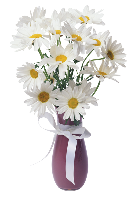 Daisies Transparent Vase Bouquet.