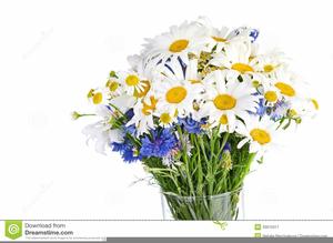 Free Clipart Daisy Bouquet.