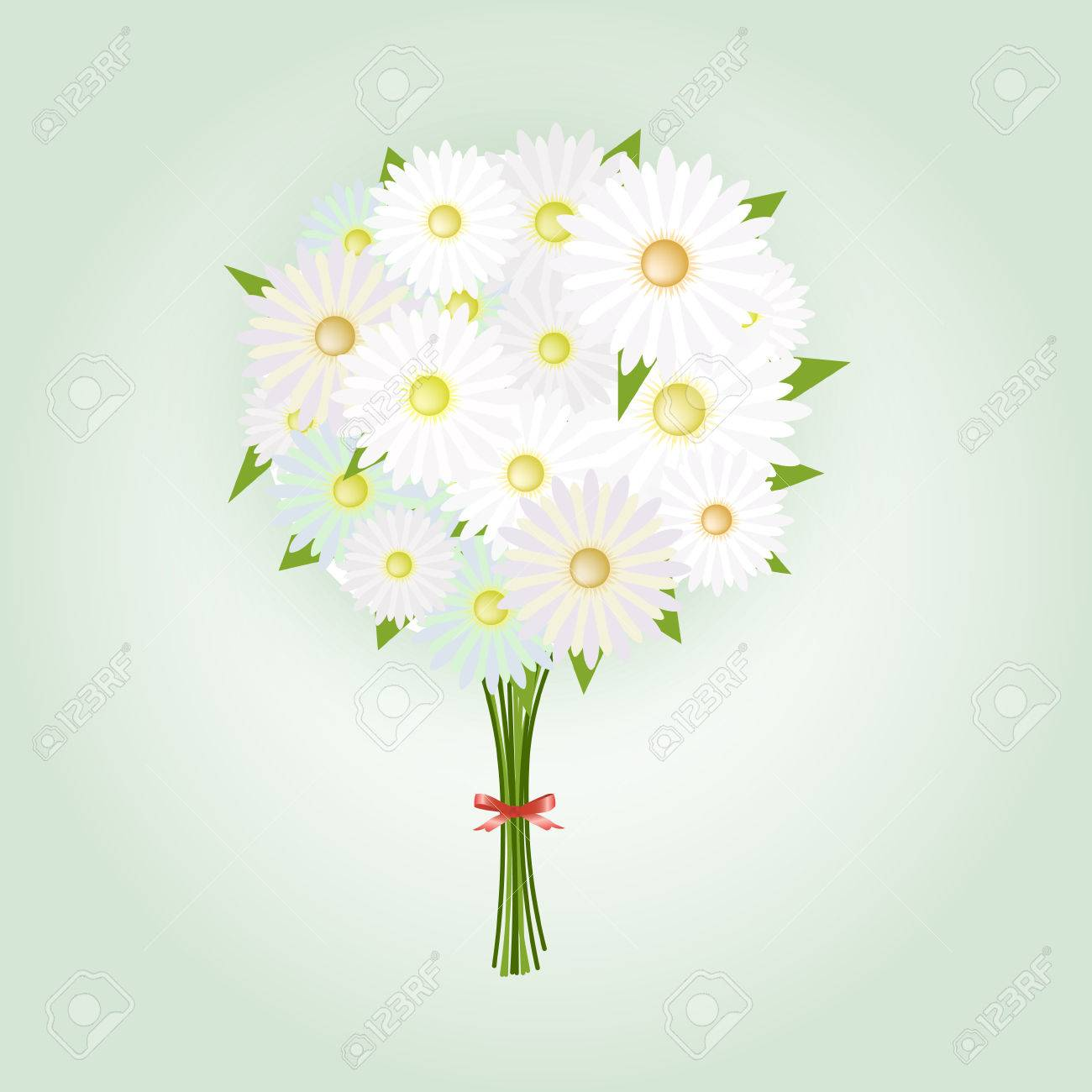 Chamomile Flower or White Daisy Daisy Bouquet.