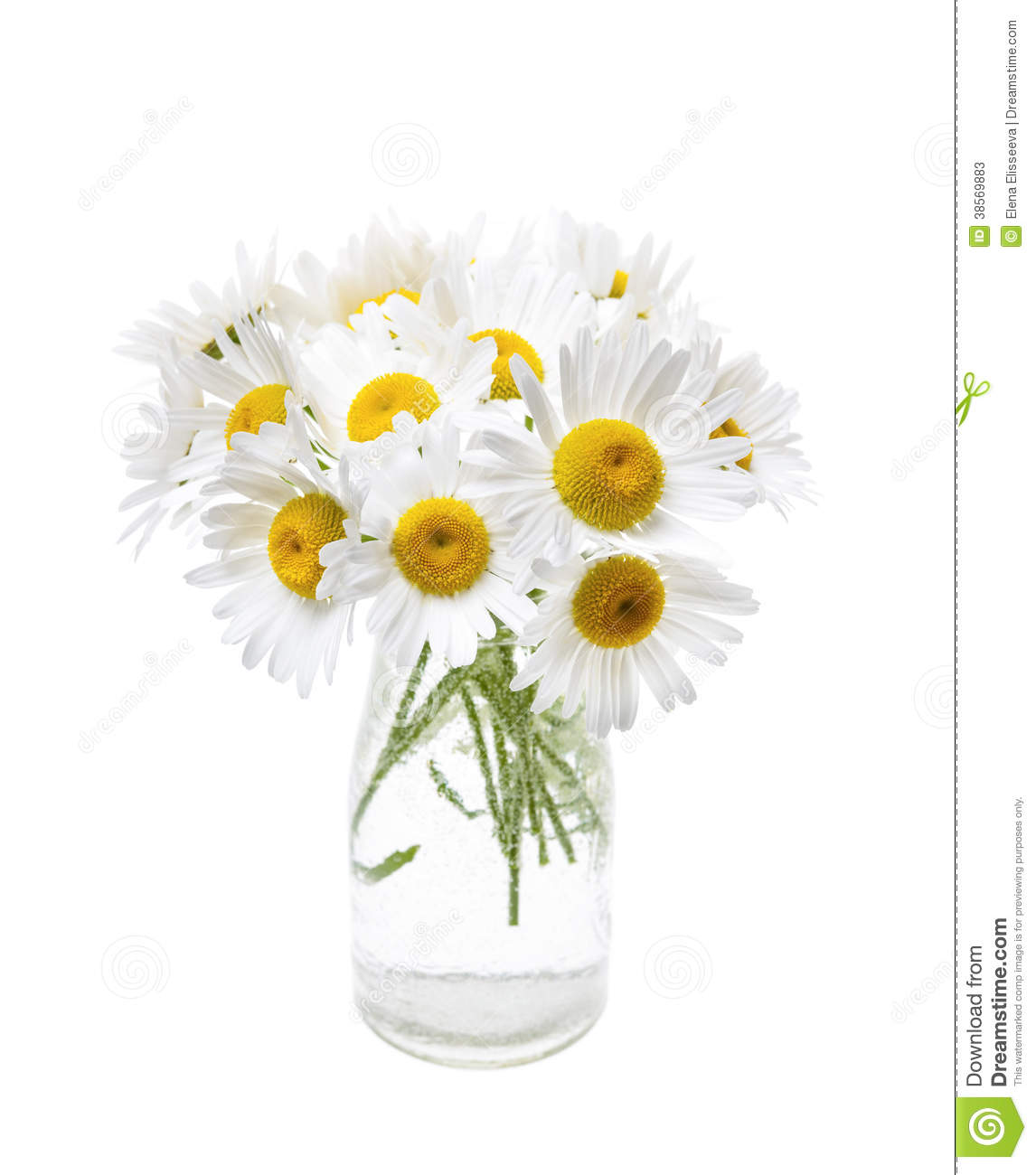 Bouquet of daisies stock image. Image of bouquet, glass.