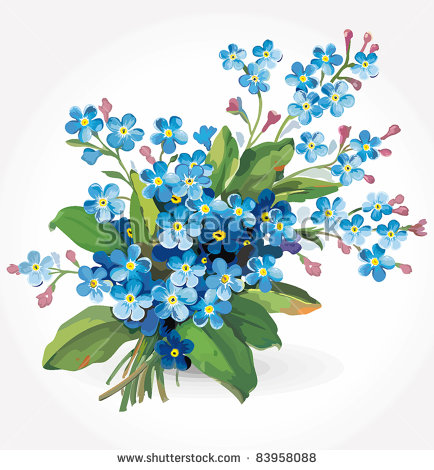 Forget Me Not Flowers Stock Images, Royalty.
