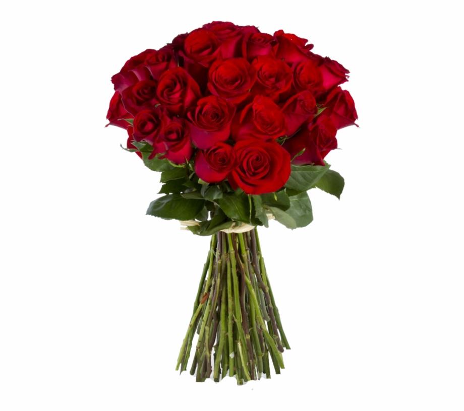 Red Rose Flower Png.