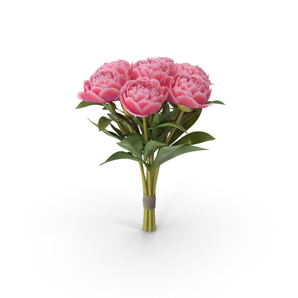 Floral Collection PNG Images & PSDs for Download.