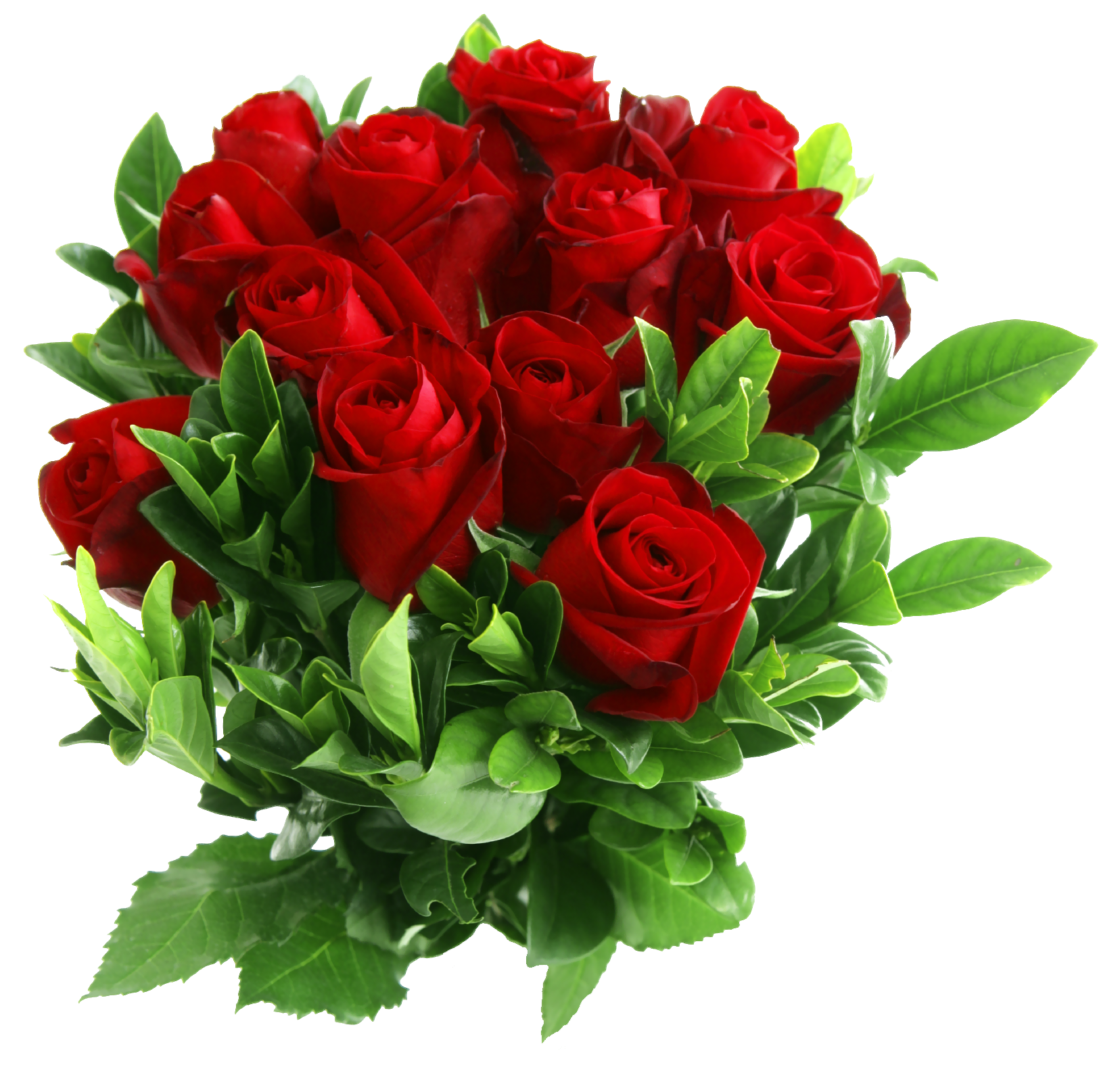 Red Rose Bouquet PNG Picture.