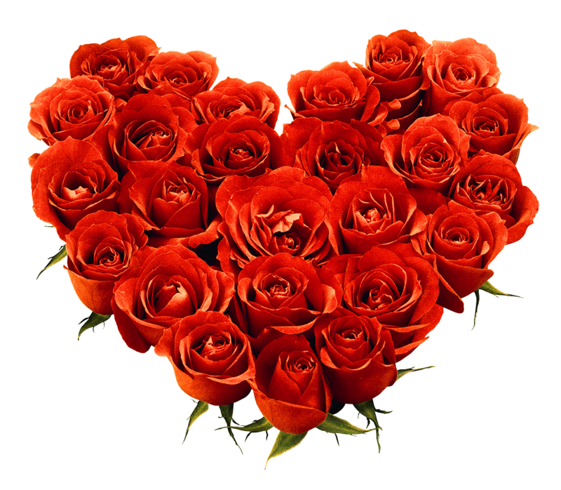 Download Free png Bouquet Of Roses Png Image Picture Download.