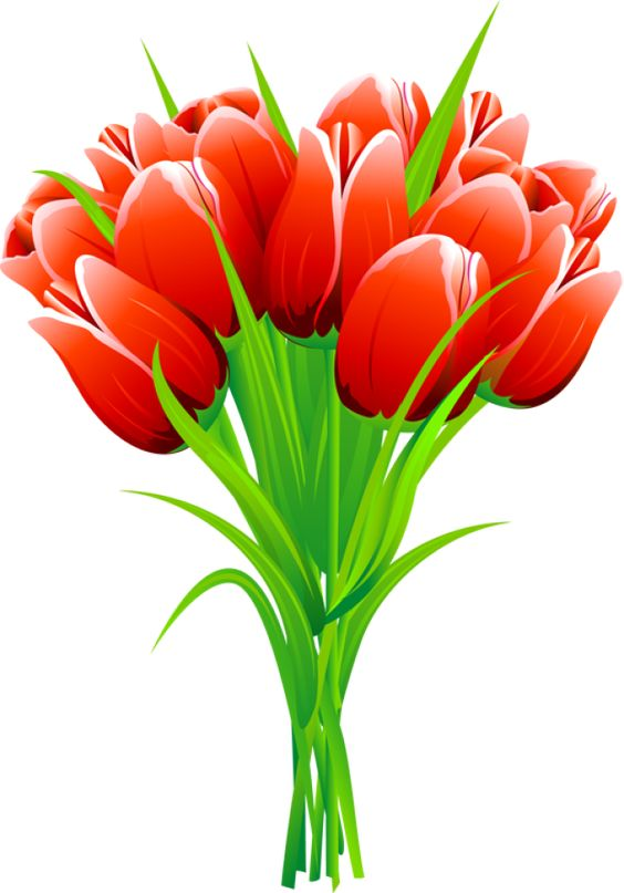 Free Cliparts Tulip Bouquet, Download Free Clip Art, Free.