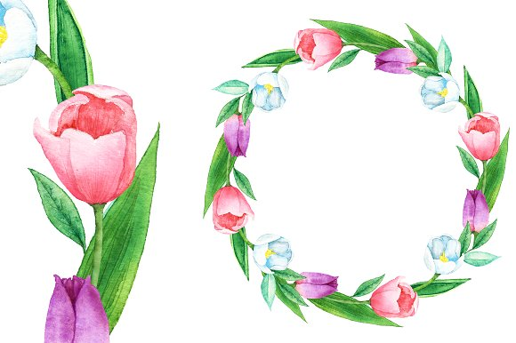 Watercolor Tulip Bouquet Clipart ~ Illustrations on Creative Market.