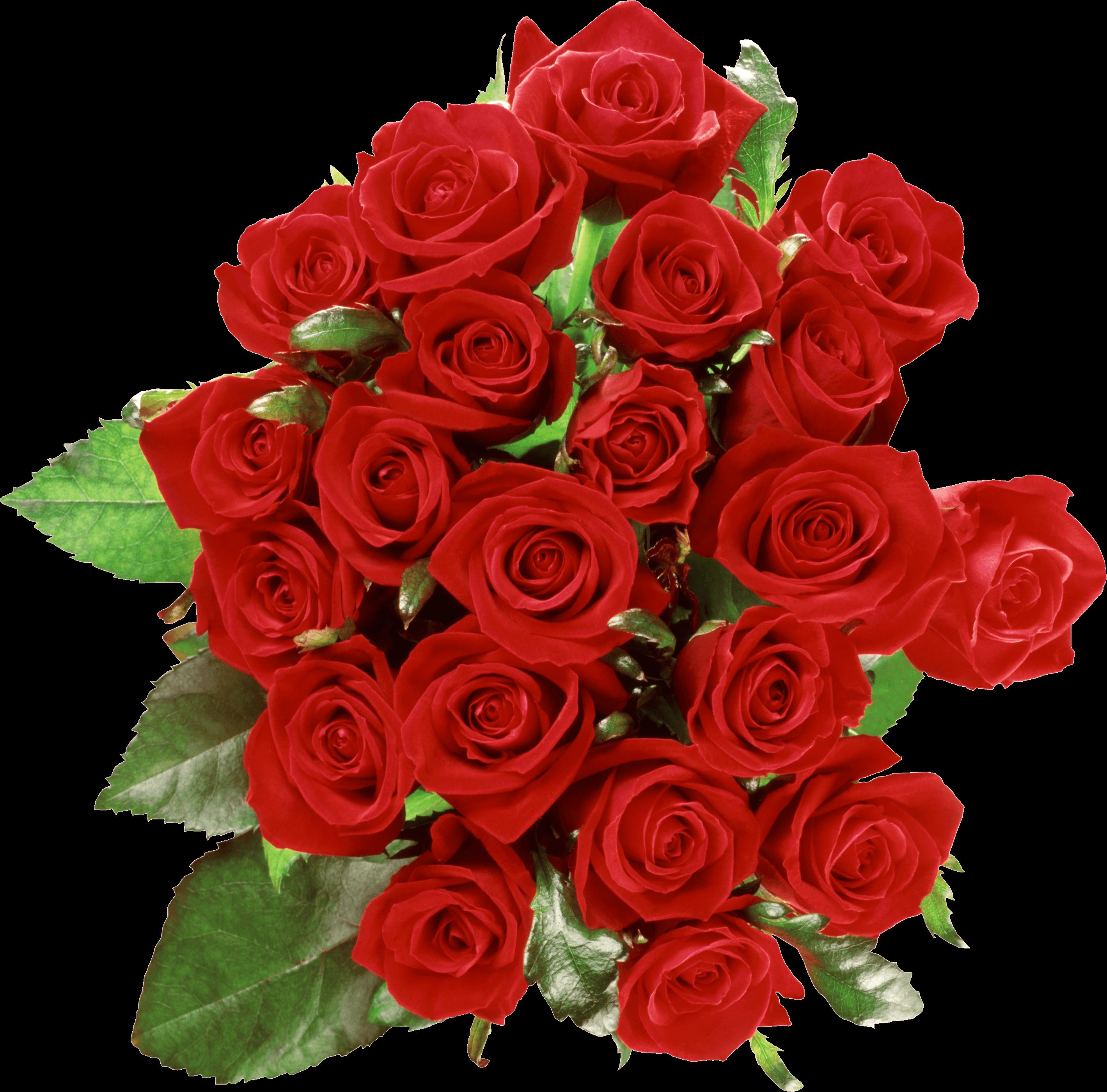 Flower bouquet Rose Clip art.