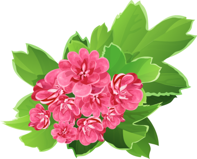 Real Floral Bouquets Clipart.