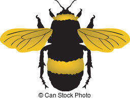 Clipart Vector of Bumblebee.