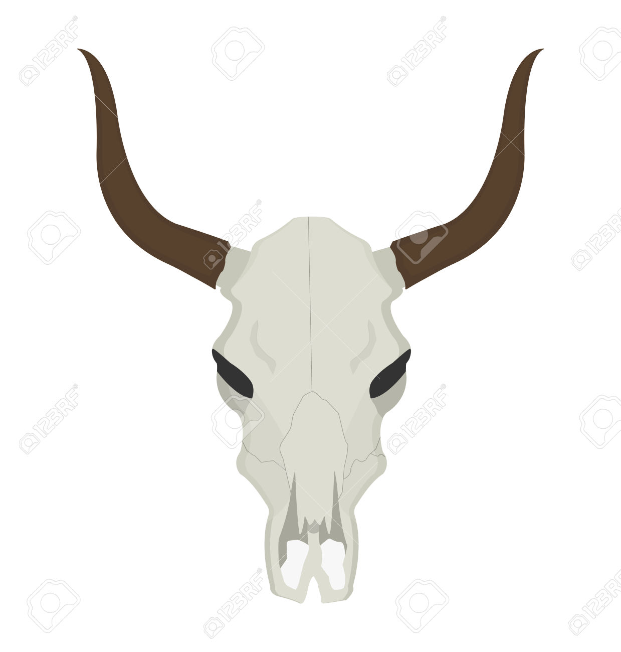Wild West Cow Skull With Horns. Color Vector Clip Art Illustration.