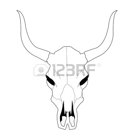 Wild West Cow Skull With Horns. Contour Lines Vector Clip Art.