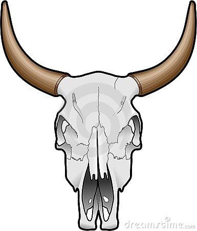 Cow Skull Stock Illustrations.