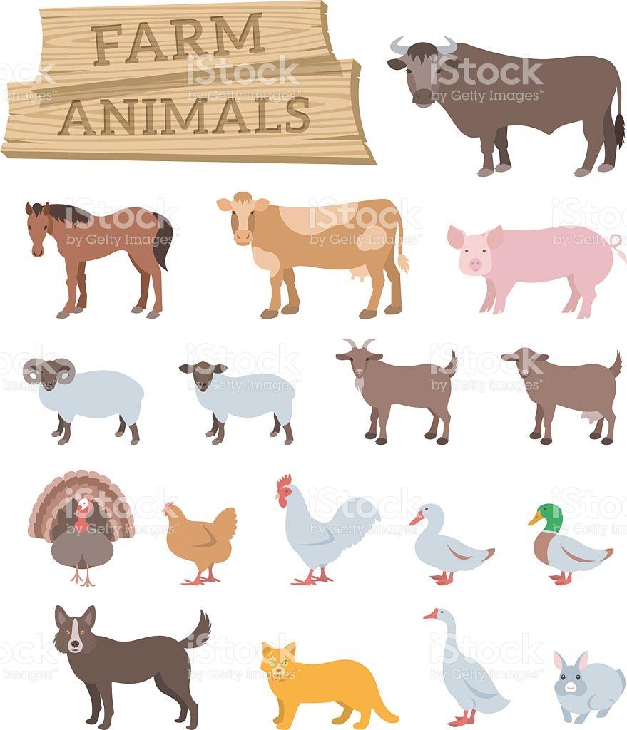 Domestic Farm Animals Flat Vector Icons stock vector art 513628940.
