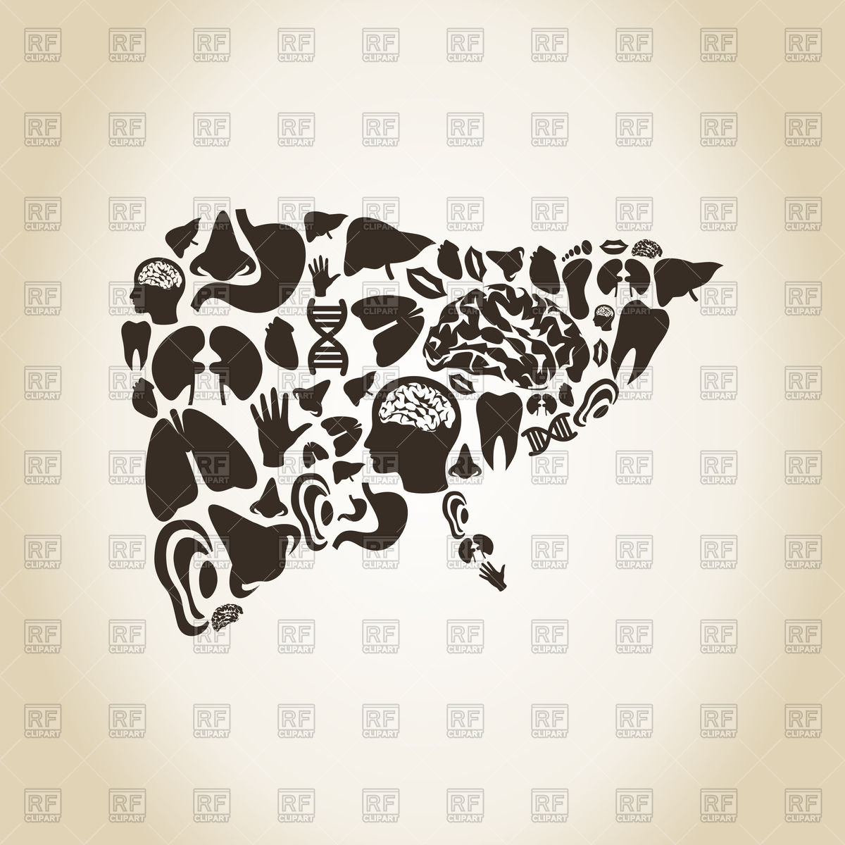 Liver made of body parts Vector Image #78263.