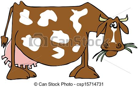 Drawings of Cow with a large udder.