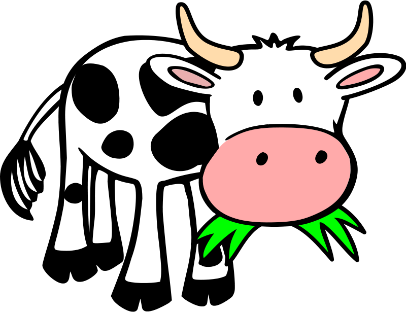 1000+ images about MOOve over..cow comin' by! on Pinterest.