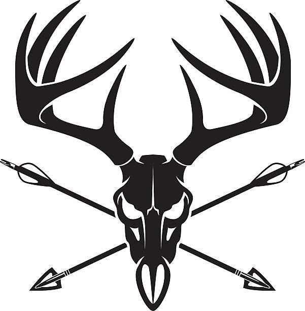 Best Bow Hunting Illustrations, Royalty.