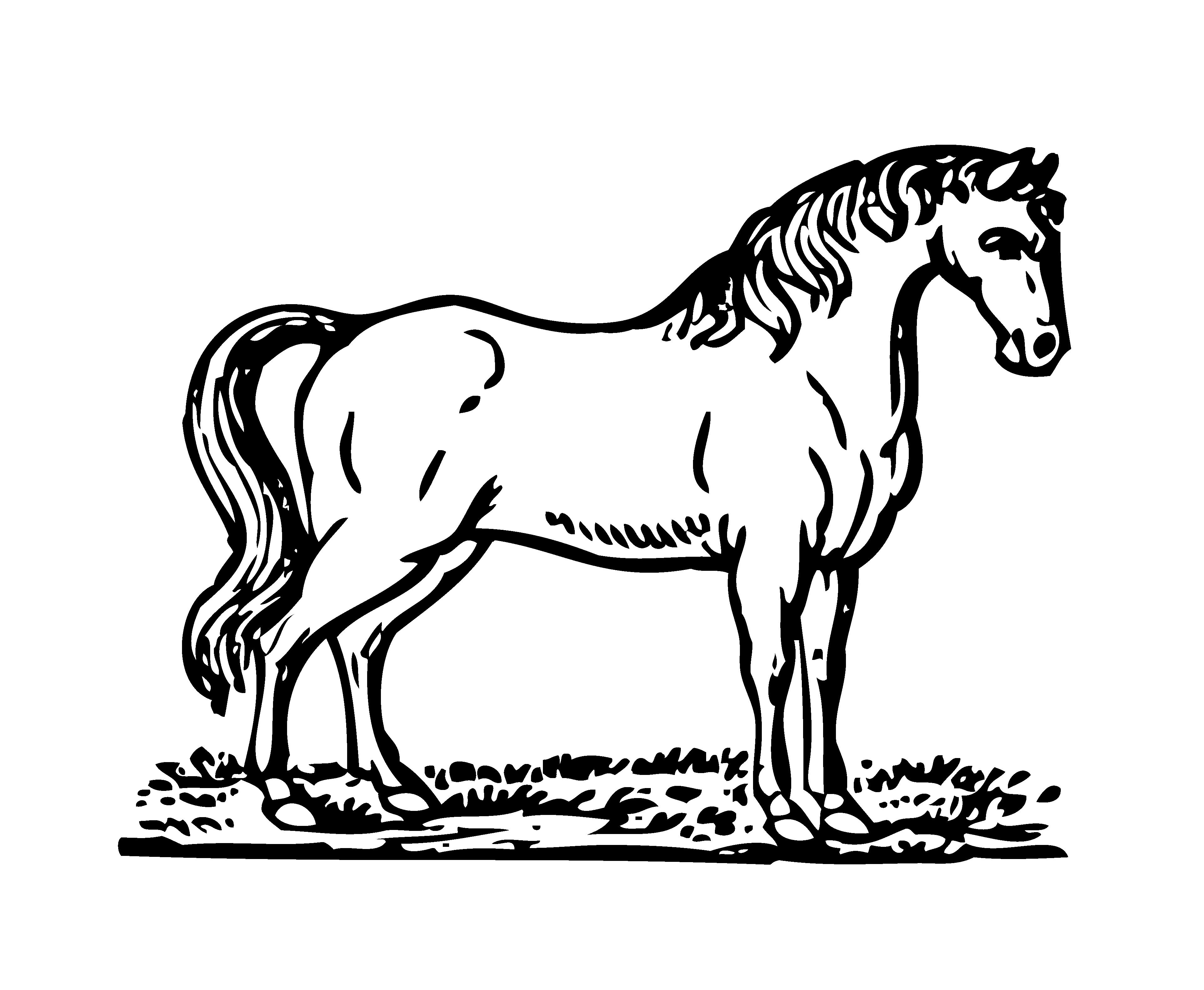 Bowen Mother Goose Horse.