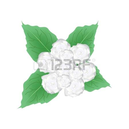 220 Bower Stock Vector Illustration And Royalty Free Bower Clipart.