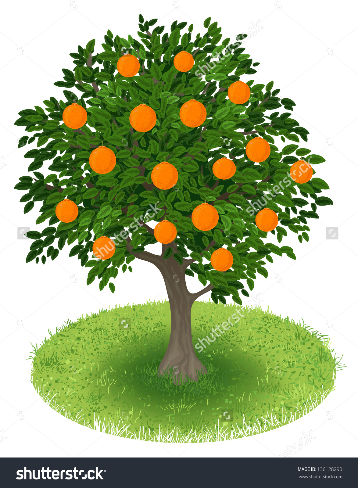 Clipart orange tree.