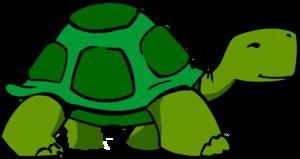 Box turtle clipart.