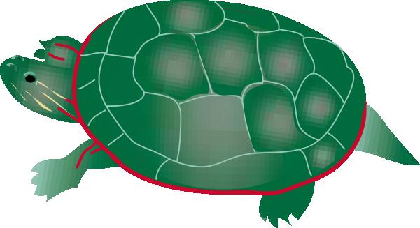 Vector art turtle clipart.