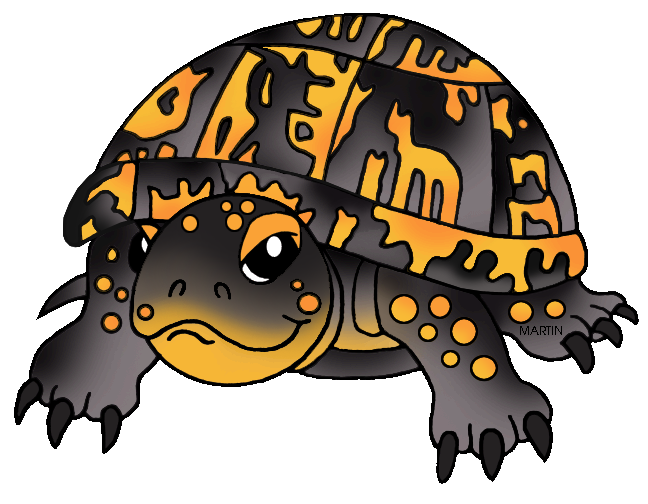 Eastern box turtle clipart free.