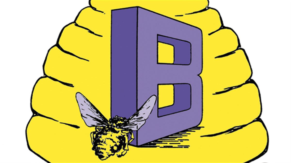BOYS BASKETBALL: Box Elder claims tournament championship; roundup.