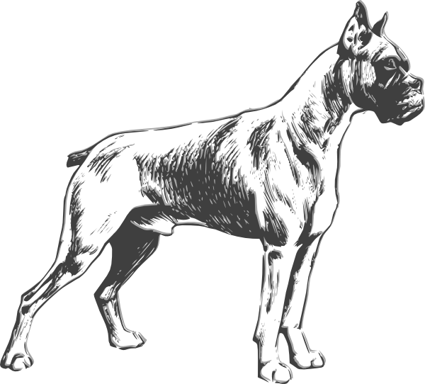 Outline Drawings of Dogs.