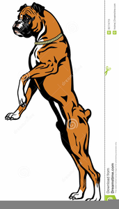 Boxer Dogs Clipart.
