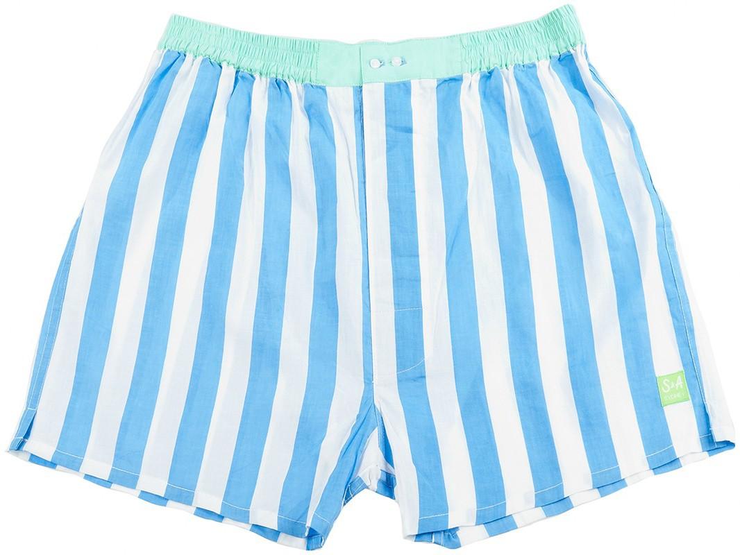 Boxer shorts clipart.