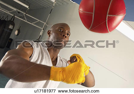 Picture of Boxer hitting speed bag in gym u17181977.