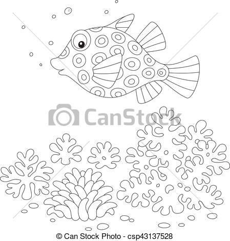 Vector Illustration of Boxfish.