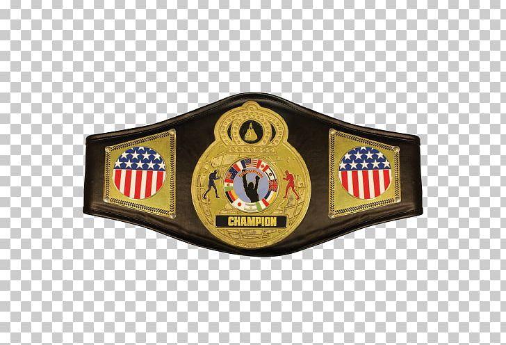 Amazon.com WWE Championship Championship Belt World Heavyweight.