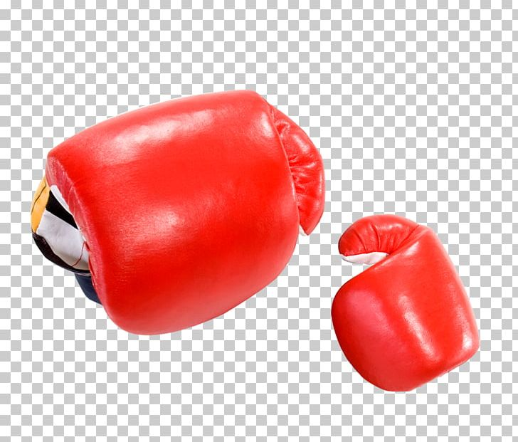 Boxing Glove PNG, Clipart, Adobe Illustrator, Box, Boxes, Boxing.
