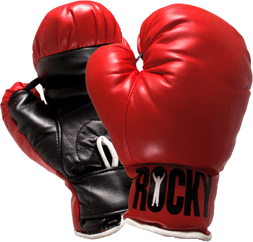 Download Boxing Gloves PNG.