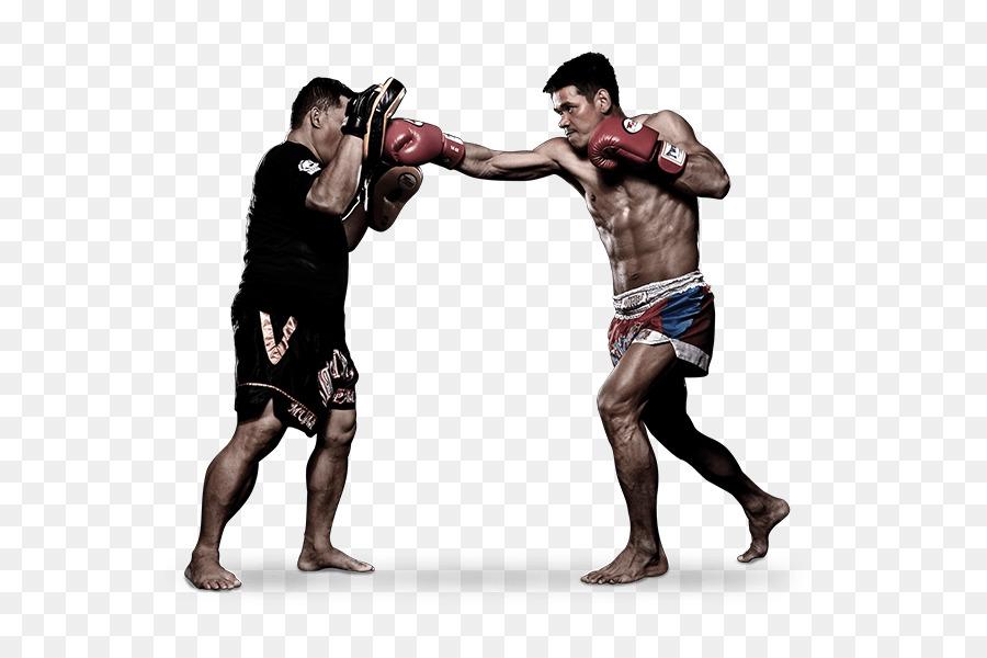 Muay Thai Mixed Martial Arts Evolve MMA #29011.