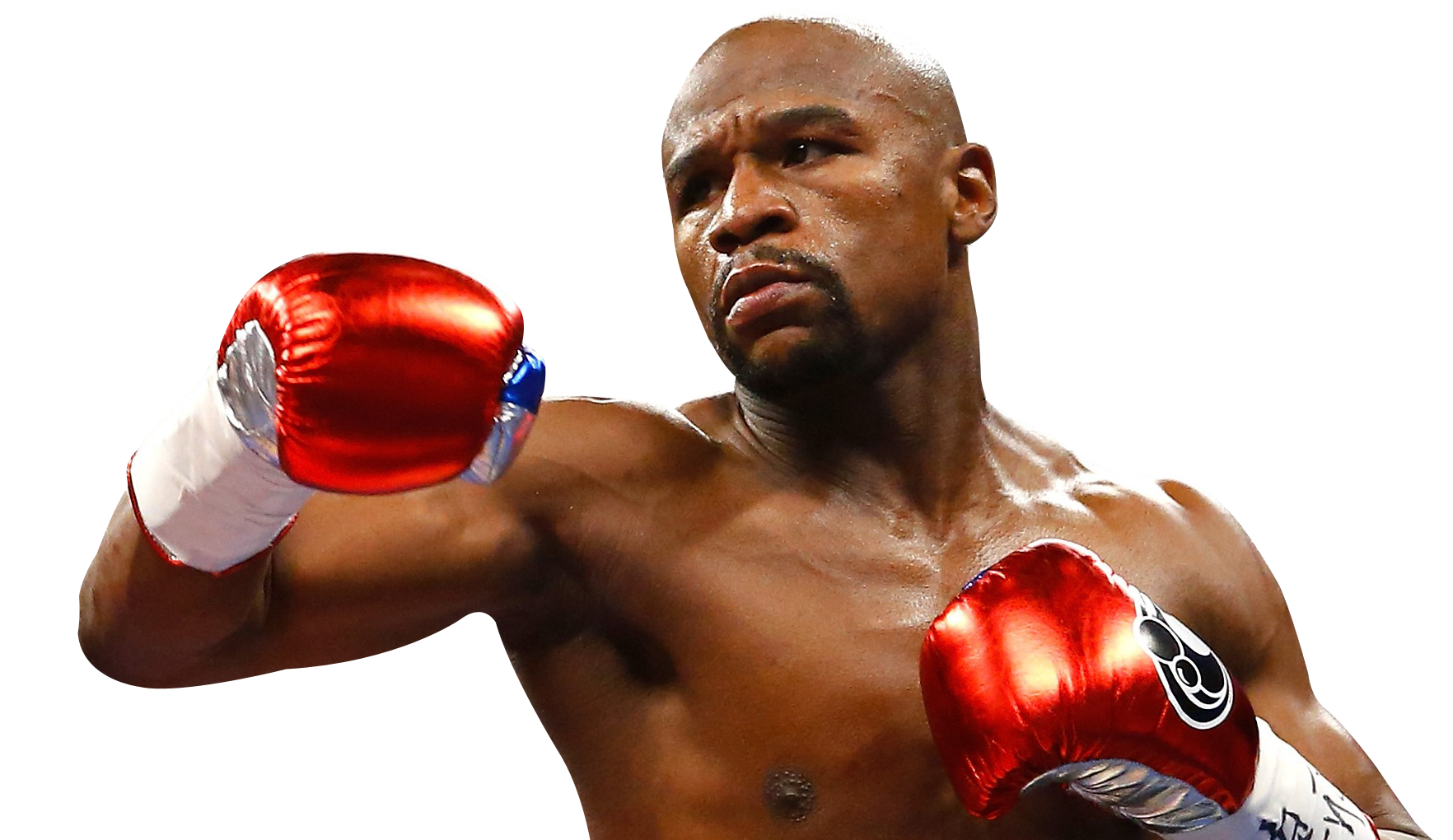 Male Boxer PNG Image.