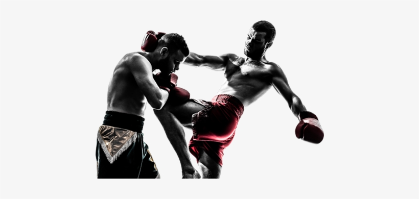 Mixed Martial Arts Fight Png Free Download.