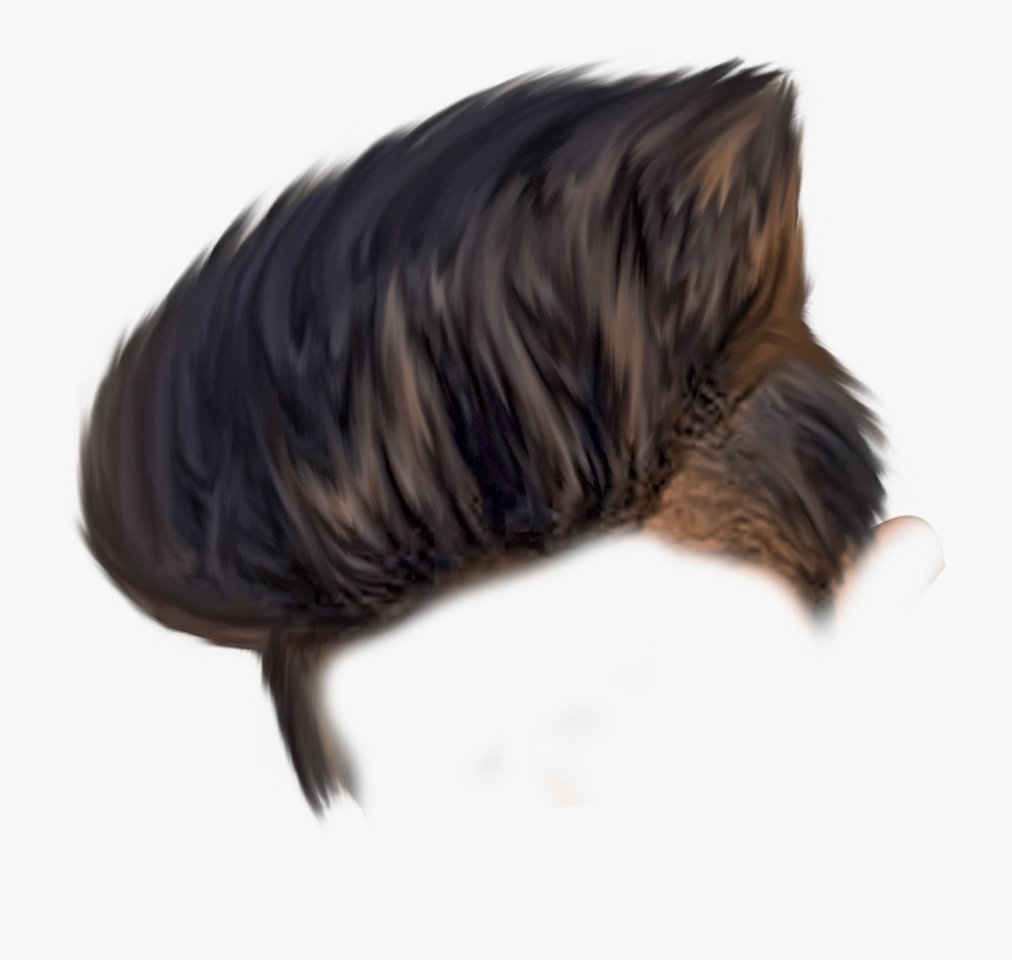 Hair Png Free Hair Png Transparent Images 49 Pngio.