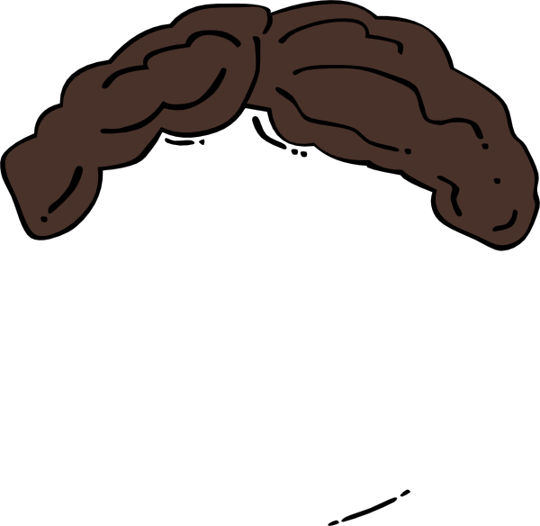 Brown Wig Clipart.