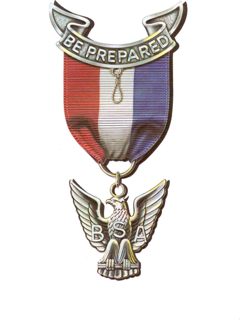 high res version. eagle scout resources. download eagle.