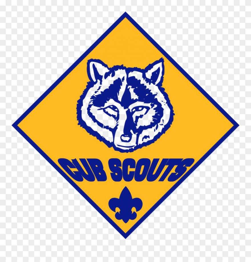 Cub Scouts And Boy Scouts Programs.